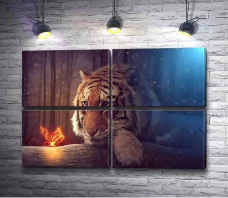 Тигр и огненная бабочка
