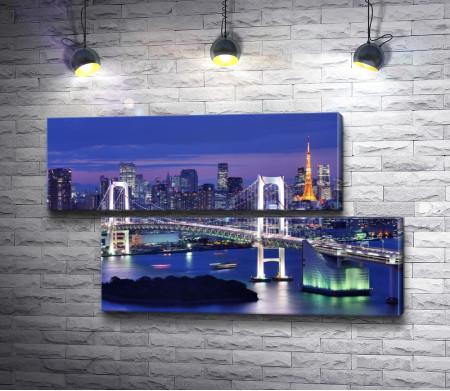 Радужный мост на фоне Токийской башни