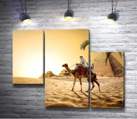 Бедуин на верблюде в пустыне на фоне пирамид