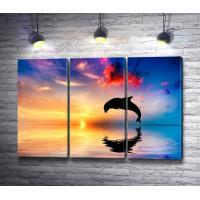 Дельфин над водой на закате