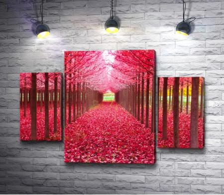 Аллея с красными листьями