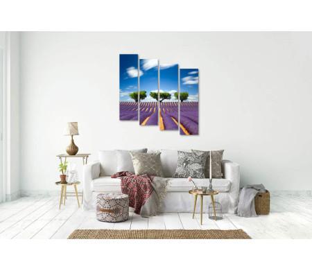 Три дерева на фоне лавандового поля