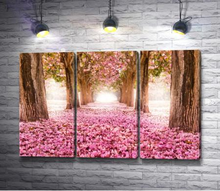 Аллея, усыпанная розовыми цветами