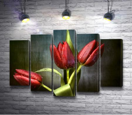 Тюльпаны цвета бордо