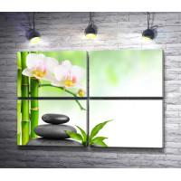 Орхидеи, бамбук и камни спа