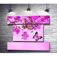 Розовые бабочки и нежные орхидеи