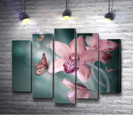 Нежная бабочка на цветке