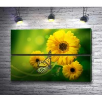 Желтые герберы с бабочками на зеленом фоне