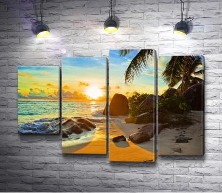 Живописный пляж с пальмами