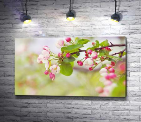 Веточка дерева в цветах