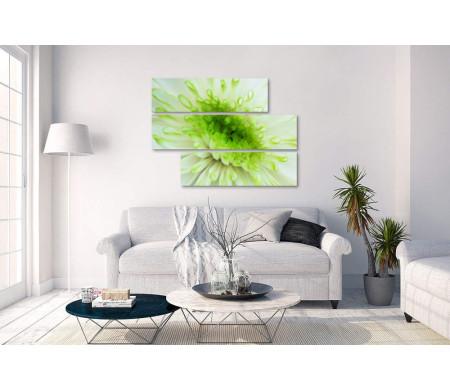 Салатовый цветок. Макросъемка