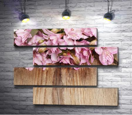 Розовая альстромерия на дереве