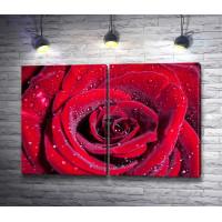 Красная роза с блестками