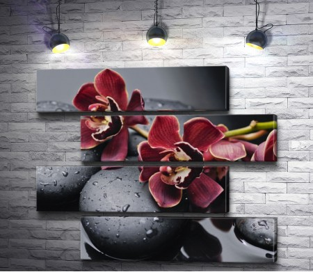Бордовые орхидеи на спа камнях