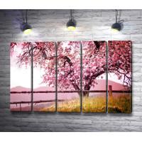 Цветущая розовая сакура у заборчика