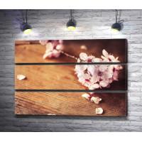 Ветка цветущей сакуры на деревянном столе