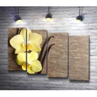 Две желтые орхидеи и стручки ванили