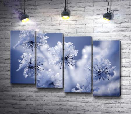Цветы зимой под снегом