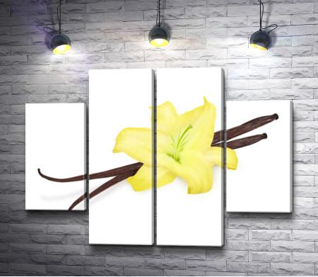 Желтая орхидея и ваниль