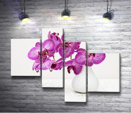 Пурпурные орхидеи в белой вазе