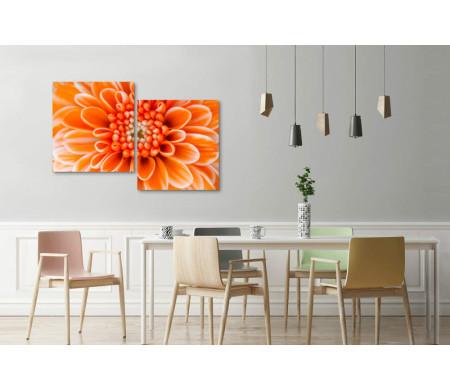 Сердце оранжевой хризантемы. Макросъемка