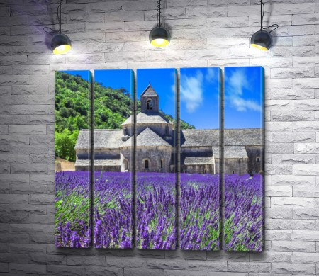 Лавндовое поле на фоне старой церкви в Провансе