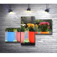 Разноцветные садовые горшки с букетами хризантем