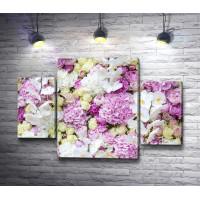 Белые орхидеи, сиреневые пионы и чайные розы