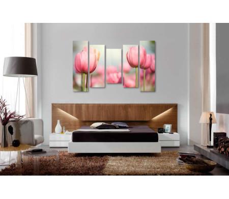 Нежно-розовые тюльпаны