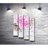 Нежно-розовый пион в белой вазе