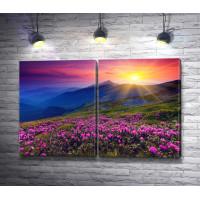 Рассвет над горной равниной с цветами