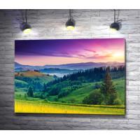 Живописная полонина в горах на фоне лилового неба