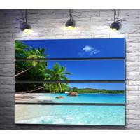 Пляж с пальмами на берегу лазурного океана
