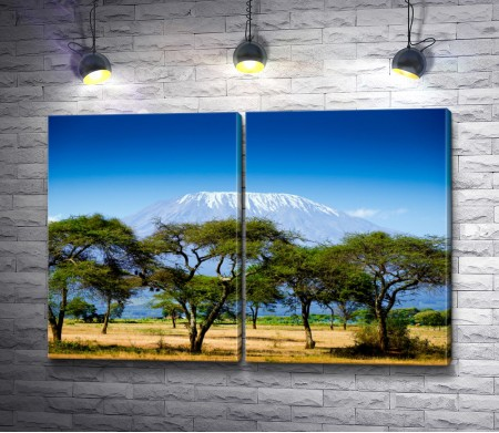 Африканские джунгли на фоне снежной горы