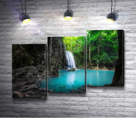 Красивый водопад в джунглях