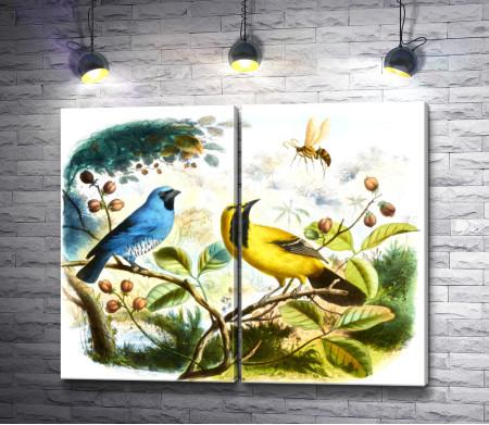 Маленькие цветные птички на белом фоне