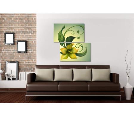 Желто-зеленый цветок