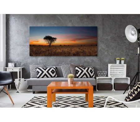 Дерево во время заката в пустыне