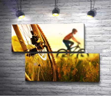 Приключения на велосипедах