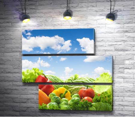 Сочные овощи