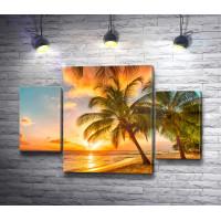 Пальмы, море и закат