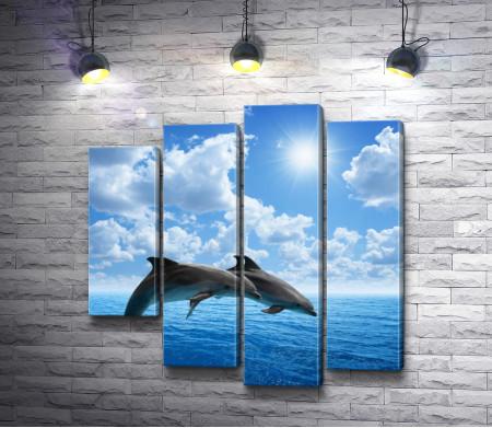 Прыжок дельфинов