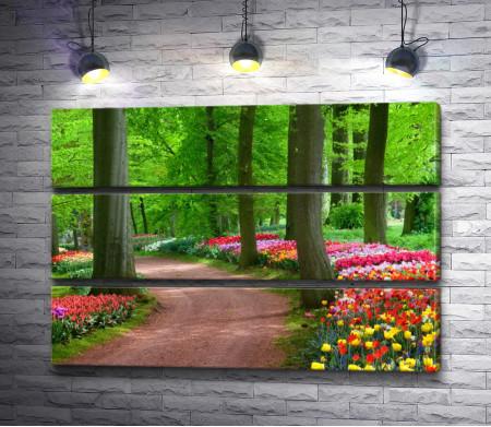 Рай из тюльпанов