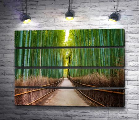 Проход между бамбука