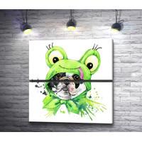 Собачка в костюме лягушки