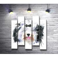 Лохматый пес с черным бантиком