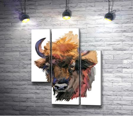 Голова бизона