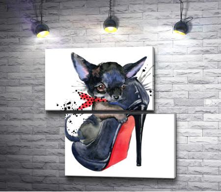 Маленький черный щенок в женской туфельке