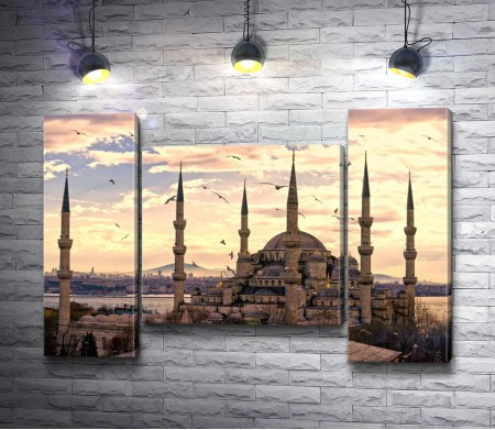 Голубая мечеть на рассвете. Стамбул
