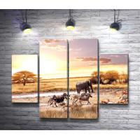 Зебры,  козули и слон в Сафари